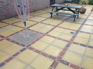 Patio Black Spot Remover
